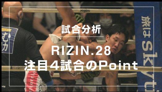 analyse_rizin28-3