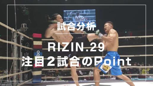 analyse_rizin29